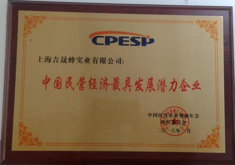 中国民营经济最具发展潜力企业