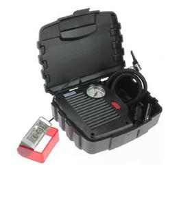 车载充气泵(8163)